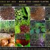 San Francisco Bay Area Winter Food Garden Planting Schedule